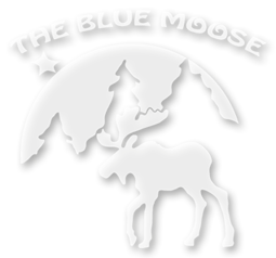 The Blue Moose Garden and Gift shop in Grand Marais, MN